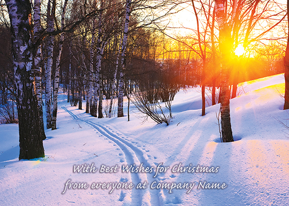 Between the Trees Front Personalised Personalised Charity Christmas Card