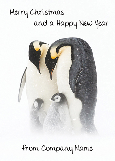 Emperor Penguins and Chicks Front Personalised Personalised Charity Christmas Card