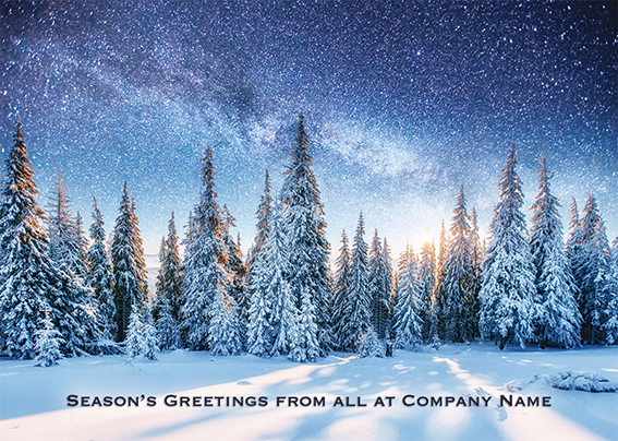 Majestic Winter's Night Front Personalised Personalised Charity Christmas Card