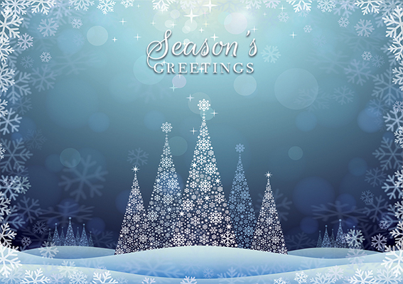 Festive Landscape Personalised Charity Christmas Card