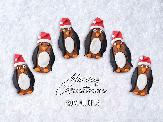 Penguin Team Personalised Charity Christmas Card