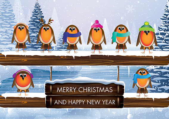 Robin Team Personalised Charity Christmas Card