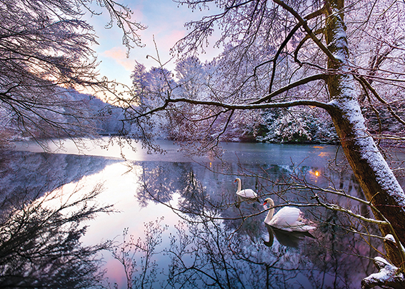 Winter on the Lake Personalised Charity Christmas Card