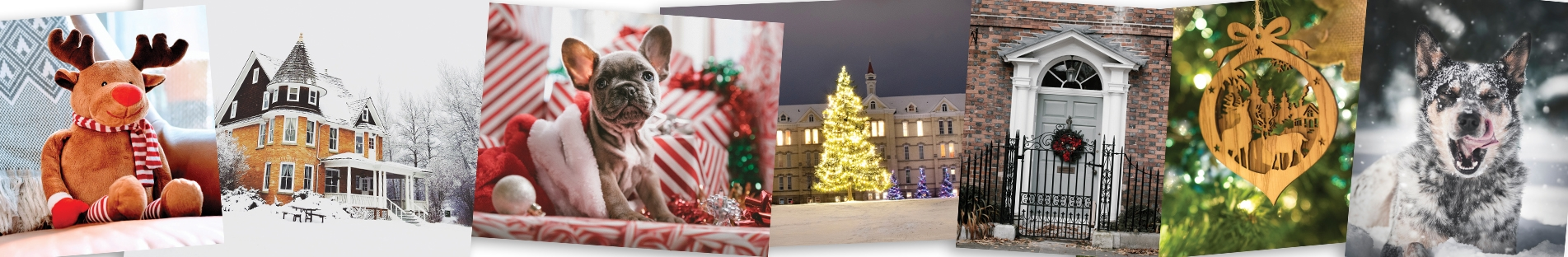 Upload your own photo Christmas cards