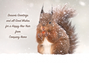 Red Squirrel in the Snow Front Personalised Card