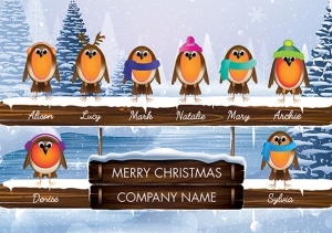 Robin Team Front Personalised Card